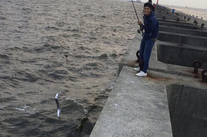 タチウオ 釣れる時期