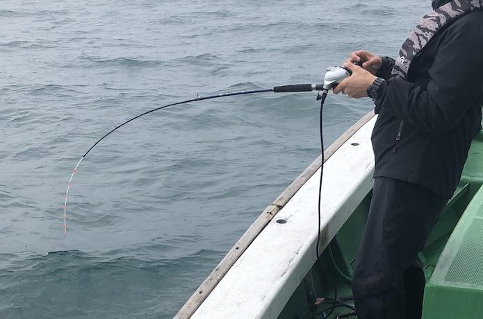 船 タチウオ リール 重量