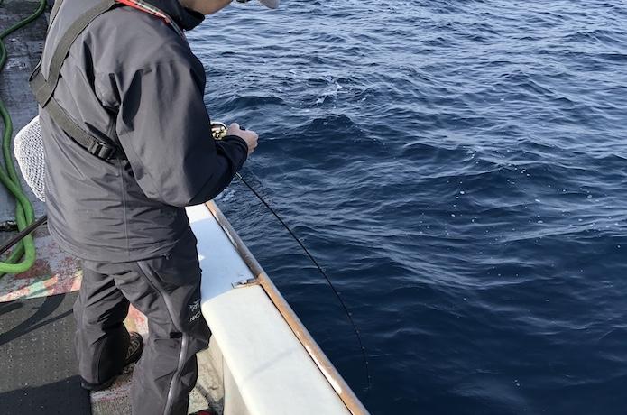 中深海 おすすめ リール