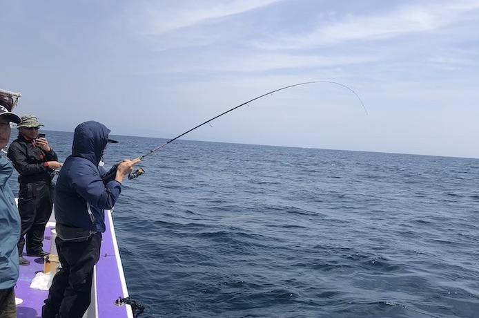 ひとつテンヤ 釣れる時期 シーズン